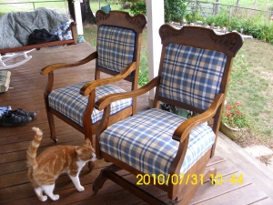 New upholstery job by me and Margaret (2)