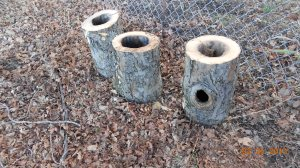 Three hollow tree logs for crafting.
