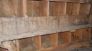 Nesting boxes that need a good cleaning.
