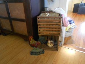 Antique egg crate & chickens