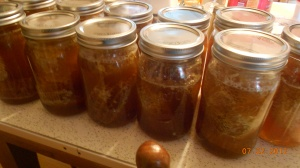 Beautiful quart jars of honey and honeycomb straight from the hives.