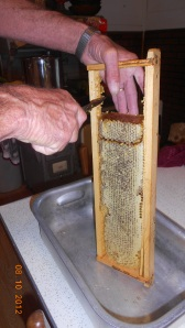 Last years honey!