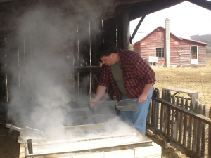 Opening the sugar house and cooking the syrup.