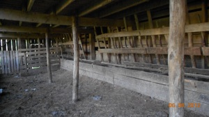 Feed stalls for the cattle