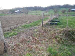 fencing between yard and garden