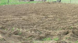 Freshly plowed garden lot