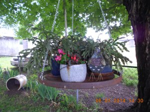 Swinging table covered with cacti, begonia, and more.