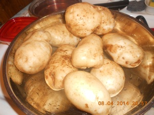 These came from two hills and I cooked some with fresh green beans and we baked some for supper last night.  SOOOO good!