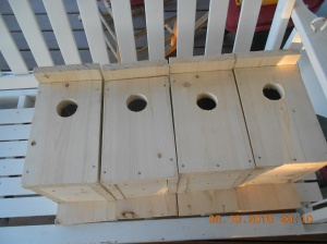 My old birdhouses are starting to come apart and now they'll have condo's to live in!