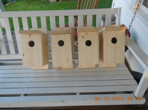 Birdhouses made by my son , Shawn, for Mother's Day!  He's putting his new garage to great use!