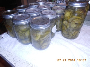 Pickles, pickle relish, and more pickles.