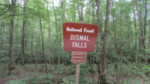 Sign beside the forestry road.
