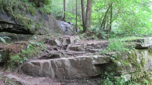 Rock steps leading down to the water and bottom of the falls.