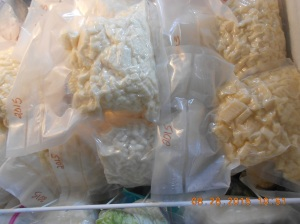 I froze about 15 bags of white corn.