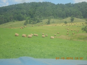 Moving hay from Snead line 07192015 (1)