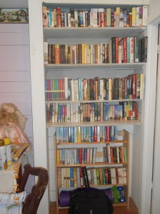 Guest bedroom book and audio shelves.