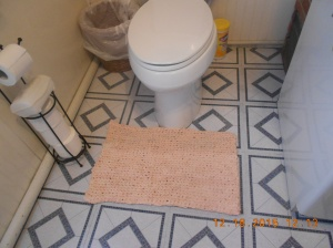 Camode rug