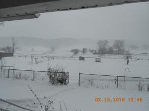 2nd Snowstorm 2016_Feb 15 (2)