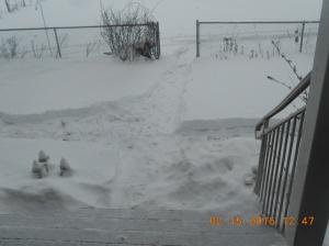 2nd Snowstorm 2016_Feb 15 (6)