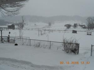 2nd Snowstorm 2016_Feb 15 (7)