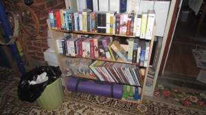 Bookcase cleanup 022016 (1)