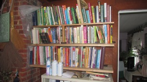 Bookcase cleanup 022016 (2)