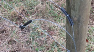 Broken fence wire hanging from the posts.