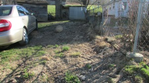 This is the area outside the yard on the right side of the house that I've planned a perenial flower bed.