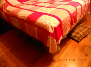 The Red Quilt 03032016 (5)