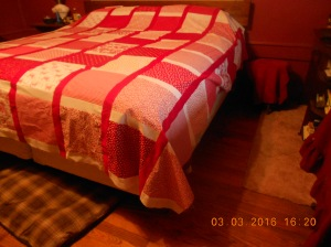 The Red Quilt 03032016 (7)