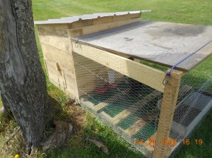 Duckling hutch