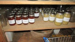 We filled up the food shelves and had to make room on the canning jar shelves for the sauerkraut and barbecue sauce.  The pumpkin and some cabbage will also go on those shelves.  I may even can the sweet potatoes because I don't know how long they will last in the cellar.