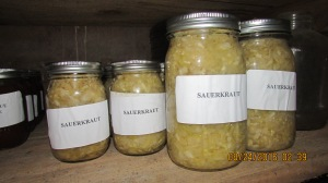 Two quarts and 24 pints of sauerkraut