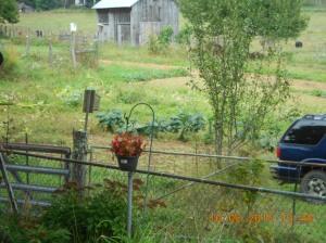 End of harvest 2016