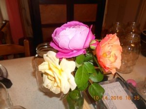 my-last-roses-for-2016-2