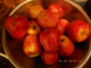 Beautiful Red Delicous apples for eating, juicing, cooking and baking.