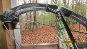 I have shelter from the weather and I hunt there with my bow, rifle but mostly with my camera.
