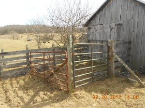 We rehung these gates after we replaced the posts.
