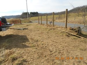 New Cattle Working Pen