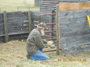 Replacing gates