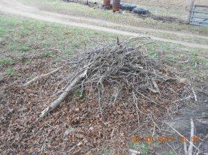 Tree limb cleanup