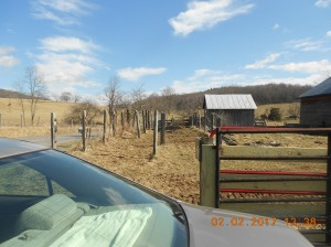 Tearing out old cattle holding pen
