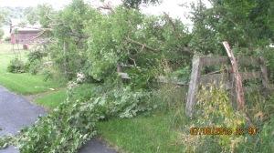 wind-damage-at-mansion-072016-14