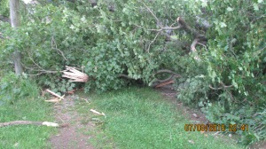 wind-damage-at-mansion-072016-16