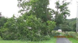 wind-damage-at-mansion-072016-18
