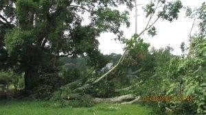 wind-damage-at-mansion-072016-19